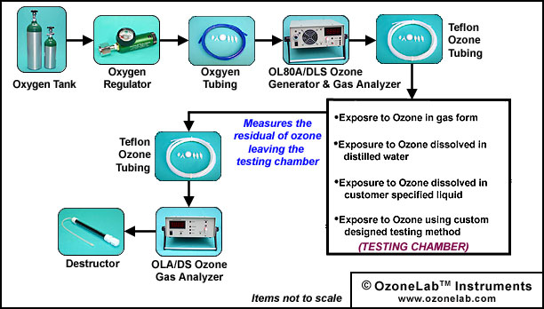 Ozone Exposure Diagram